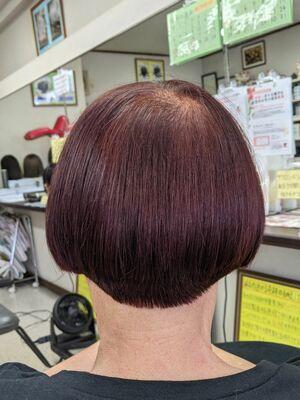 しみない·傷まない·抜け毛減少·輝髪ザクロペインター&ヘアカット···¥10,100(2時間30分)