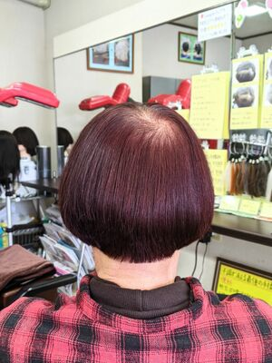ノンジアミン白髪染め·ザクロペインター&ヘアカット···¥10,100(2時間30分)