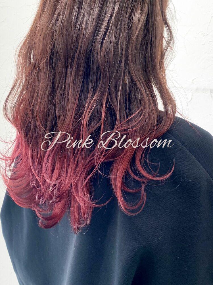 透明感ピンクブロッサム//グラデーションカラー//裾カラー