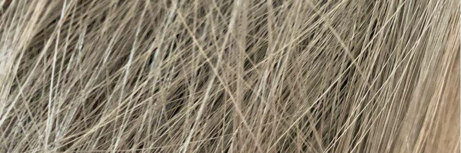 スタイリスト:🍀髪質改善🍀蘭丸のヘッダー写真