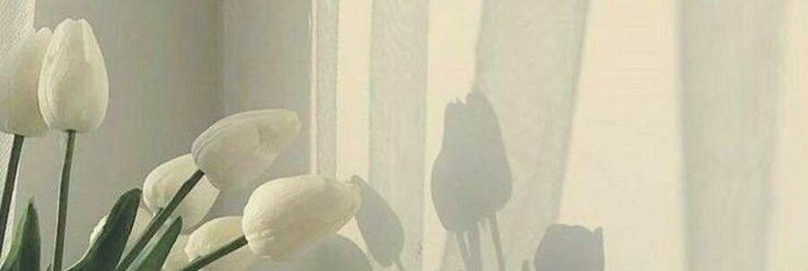 スタイリスト:野村 菜穂のヘッダー写真