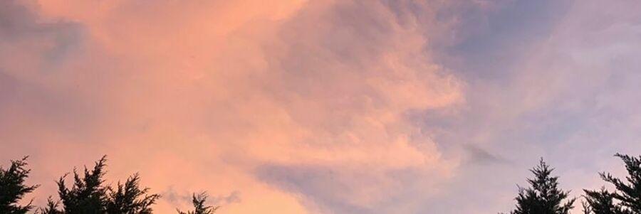 スタイリスト:浜野仁海のヘッダー写真