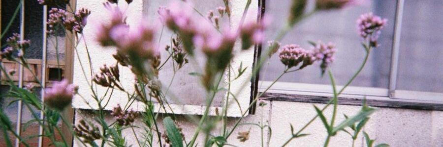 スタイリスト:岩辺 凪咲のヘッダー写真