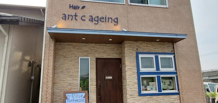 ant c ageing hair