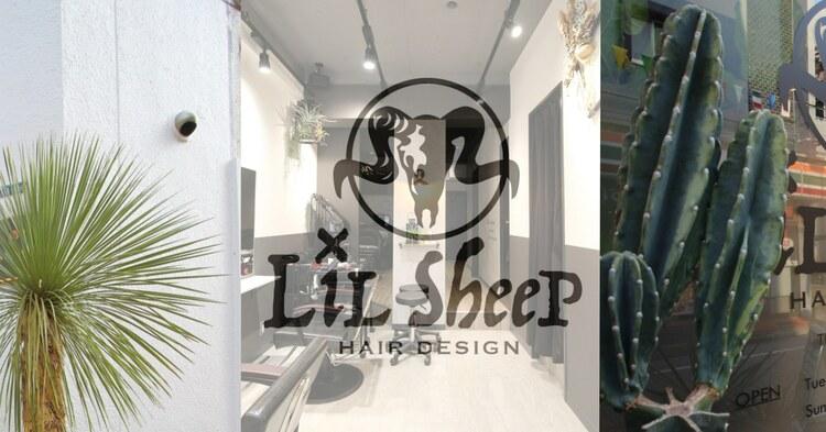 Lilsheepの画像