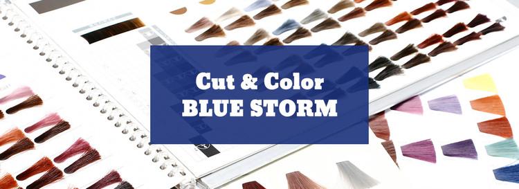 Cut & Color BLUE STORM 東陽町店の画像
