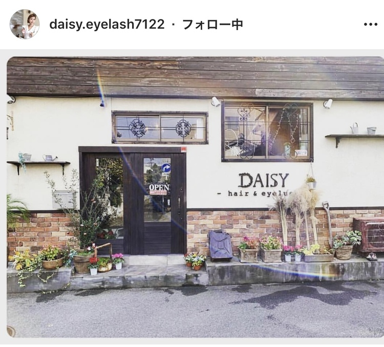 DAISY〈デイジー〉の画像
