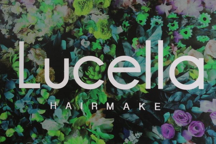Lucellaの画像