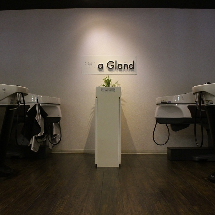 a Gland tetra 野田阪神店